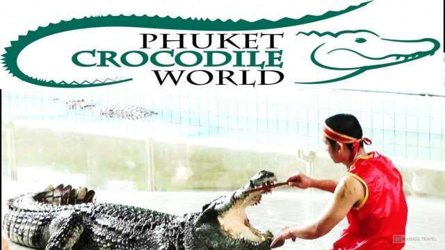 Крокодиловая ферма Crocodile World